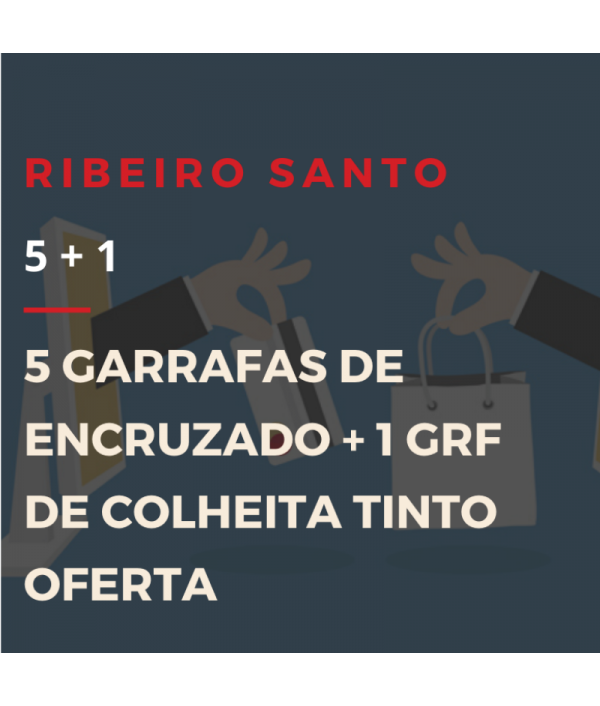 DESTAQUE RIBEIRO SANTO - #FiqueEmCasa