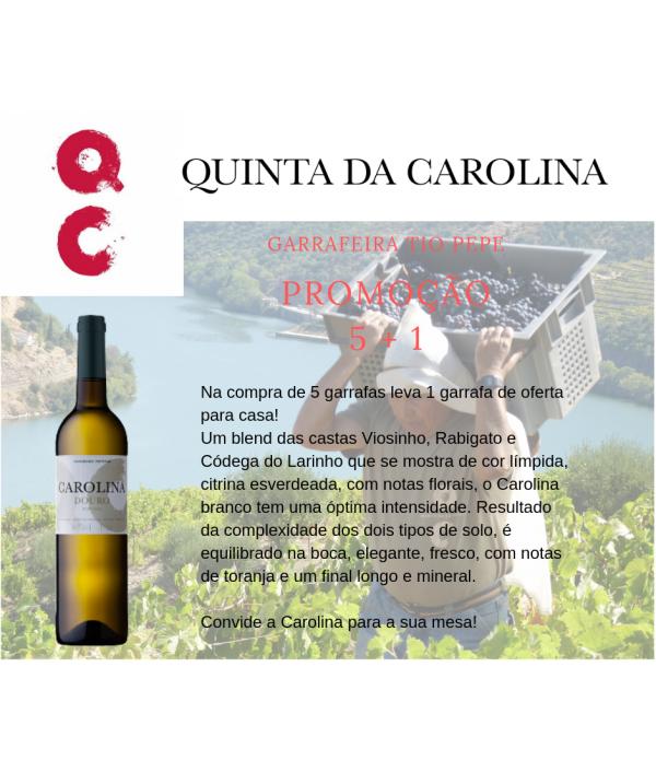 CAROLINA bº 2017 - Douro (CAIXA 6 GRFS)